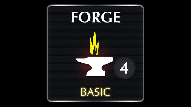 FORGE  Basic 4