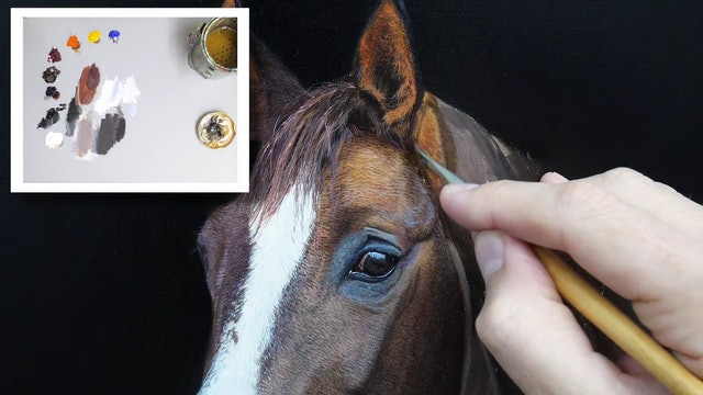 How To Paint a Horse Part 10