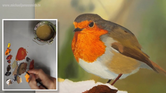 How To Paint a Robin Part 5