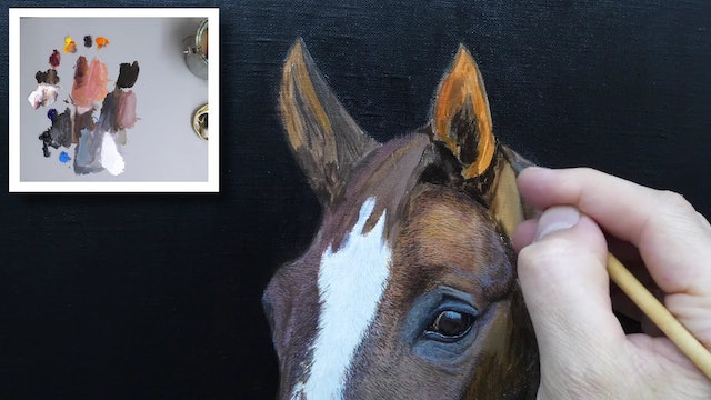 How To Paint a Horse Part 5