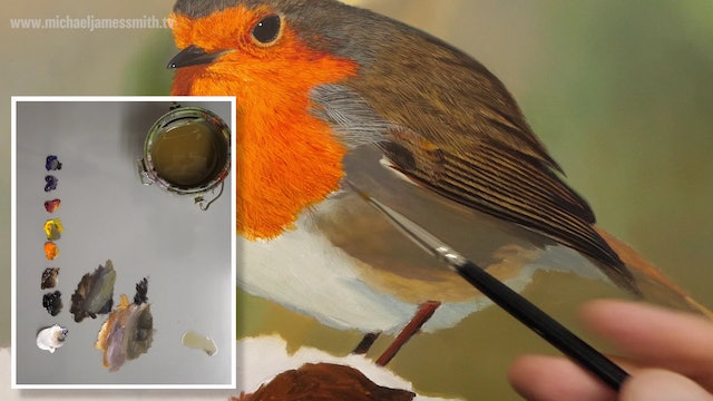 How To Paint a Robin Part 6
