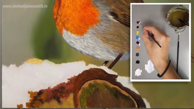 How To Paint a Robin Part 7