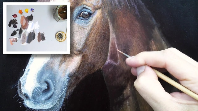 How To Paint a Horse Part 11