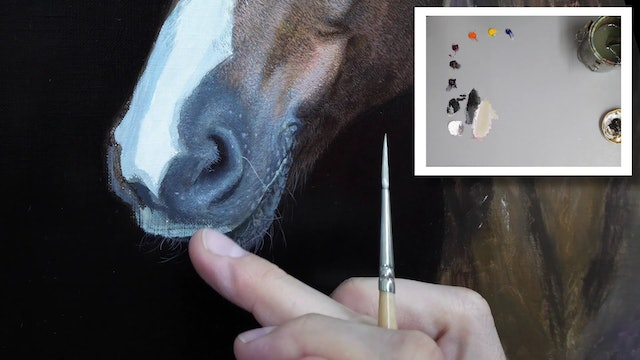 How To Paint a Horse Part 9