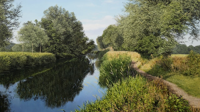 Willows Beside the River