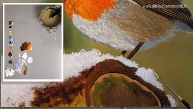 How To Paint a Robin Part 8