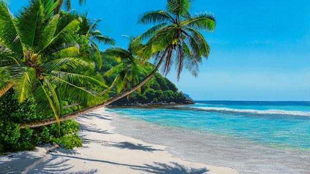 Paradise Sands