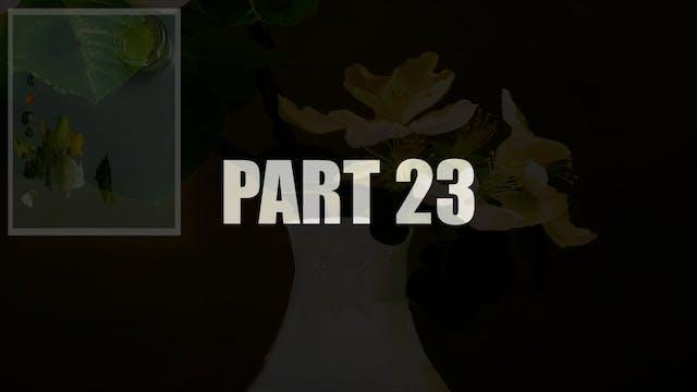 Part 23