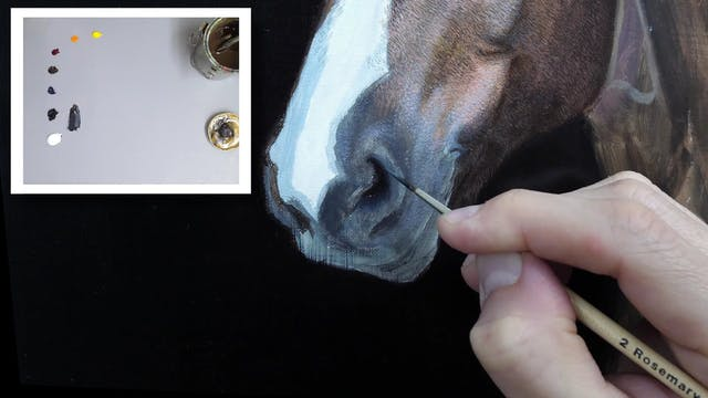 How To Paint a Horse Part 8