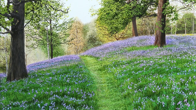 Bluebell Hill