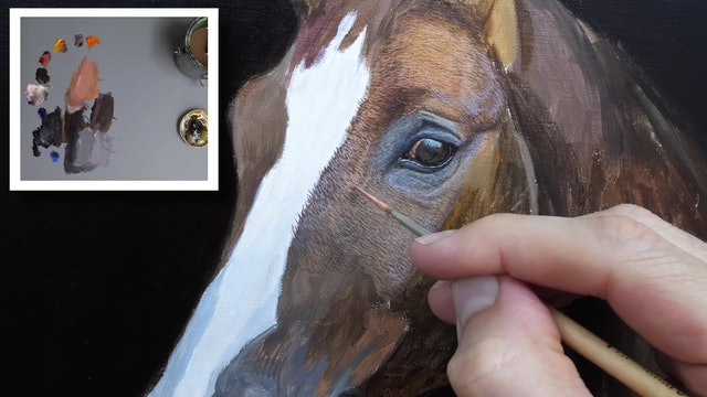 How To Paint a Horse Part 4