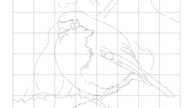 Sketching Diagram.jpg
