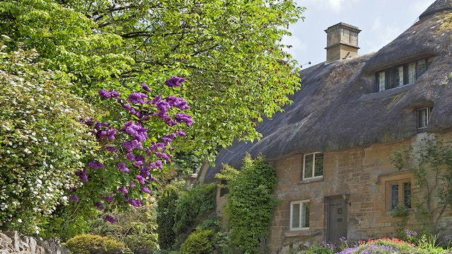 Thatched-Cottage-Reference-Photo.jpg