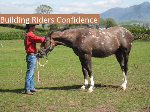 Building Rider Confidence (Ground and Saddle)
