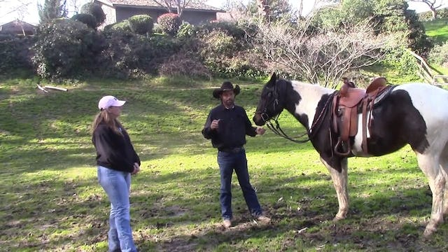 Trail Safety, How to use your horse as a weapon in self defense