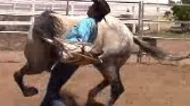 Defensive Aggression in Abused Horses (Part 1 Ground Exercises)