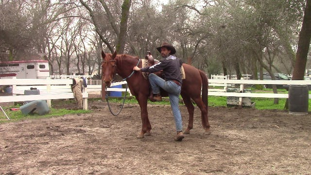 Video Tip, Mounting and Dismounting