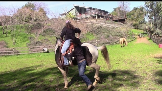 Trail Safety - How to use your horse as a weapon in self defense