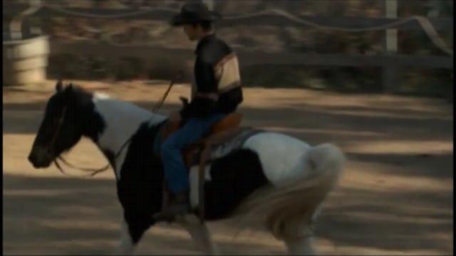 Weaving amd Stall Walking (Part 4, Saddle Exercises)