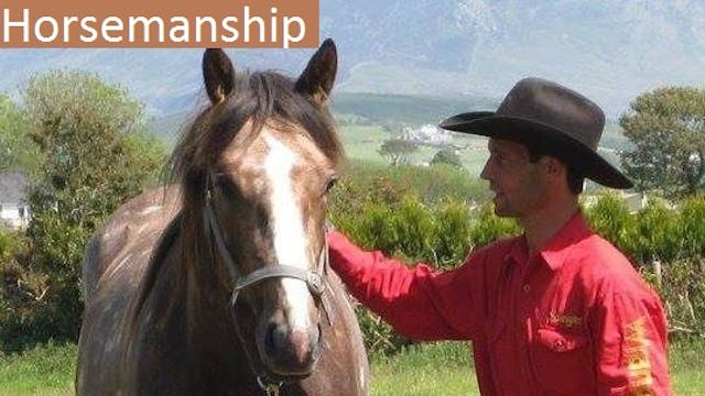 Horsemanship - Building a True Partnership with Your Horse -