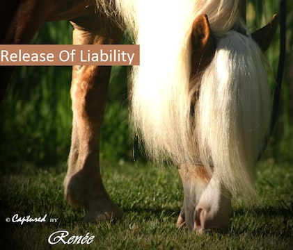 1 Release of Liability, Click to view, Please Read