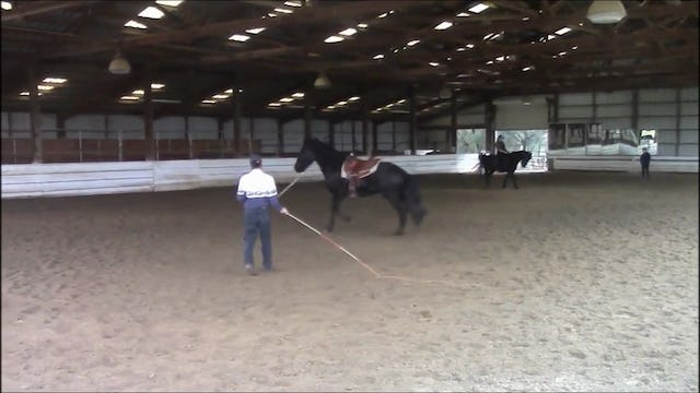 The Buck Stops Here (Part 2, Ground and Saddle Exercises)