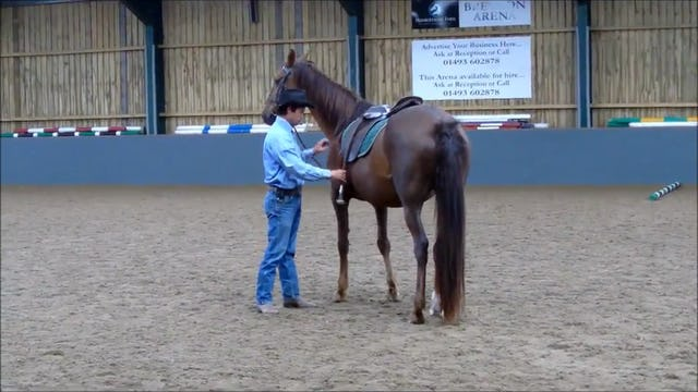 Teaching horses to mount at the mounting block with Mike Hughes, Demo, Norfolk United Kingdom (Special Event)