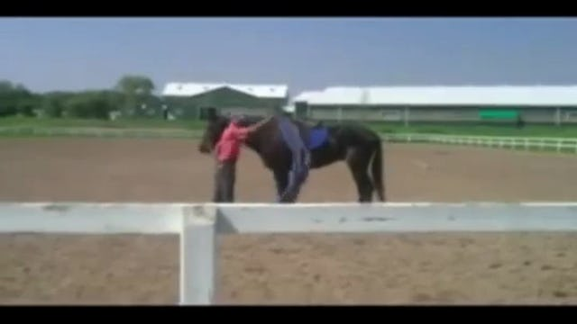 Training Horse that spook, Canada's Outdoor Equine Expo with Mike Hughes, Demo, Canada (Special Event)