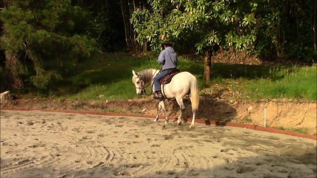 Side Passing Uner Saddle (Part 2, Saddle Exercise)