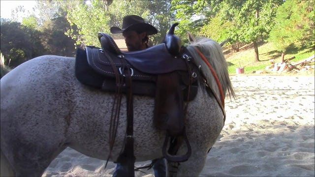 Sandy  (Teaching your horse to stand still while mounting)