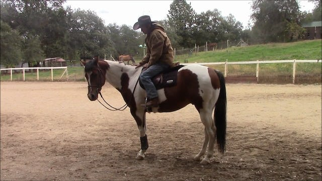 Making mistakes, Mounting, Dismounting, and under saddle