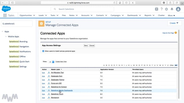 Setting User Rights to Salesforce Mobile