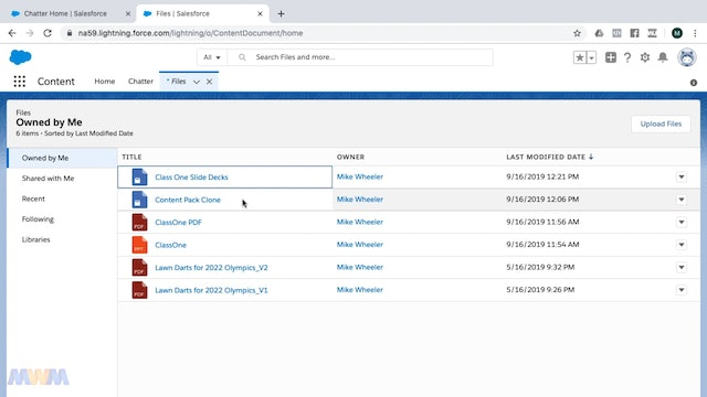 Working with Libraries in Lightning Experience (via Files)