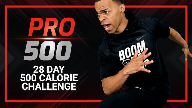 PRO 500 - 28 DAY 35 Minute 500 Calorie Workout Challenge