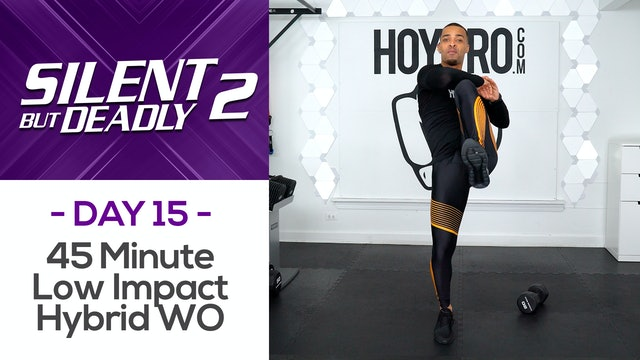 45 Minute Hybrid Low Impact Workout + Abs - SBD2 #15
