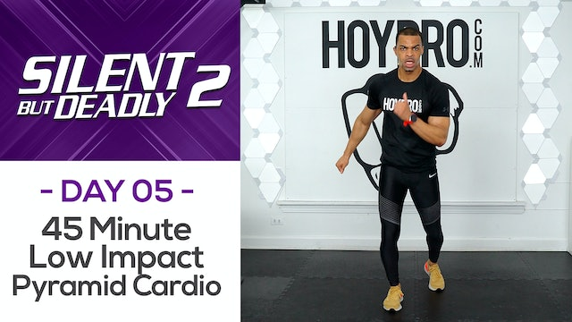 45 Minute Low Impact Cardio Pyramid + Abs - SBD2 #05