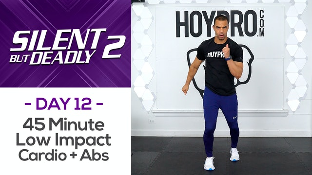 45 Minute Low Impact Pure Cardio Circuits + Abs - SBD2 #12