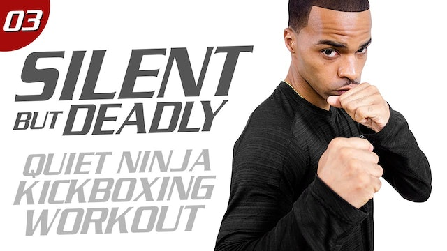 40 Minute Quiet Ninja Low-Impact Kickboxing Workout - Silent But Deadly #03