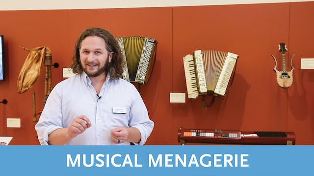 Musical Menagerie Tour   Video 5   Italy