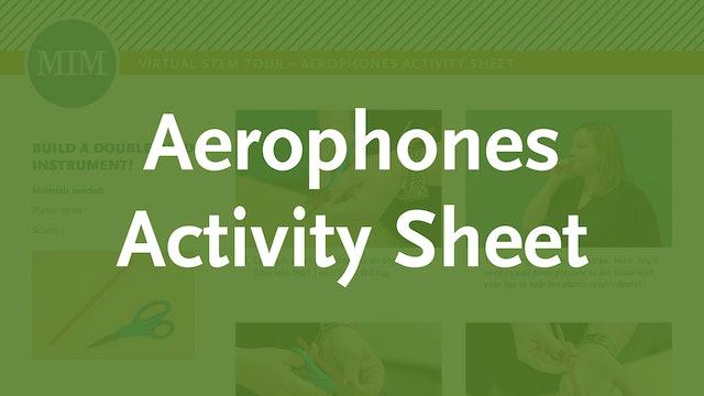 3 – Aerophones Activity Sheet
