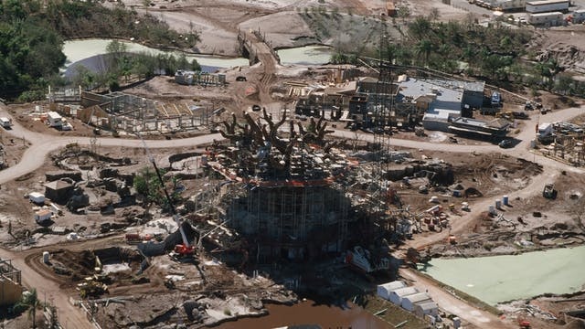 History of the Disney Parks - Tree of...