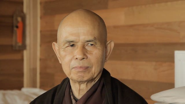 T5P Video Extras - Thich Nhat Hanh Buddhism and Peace