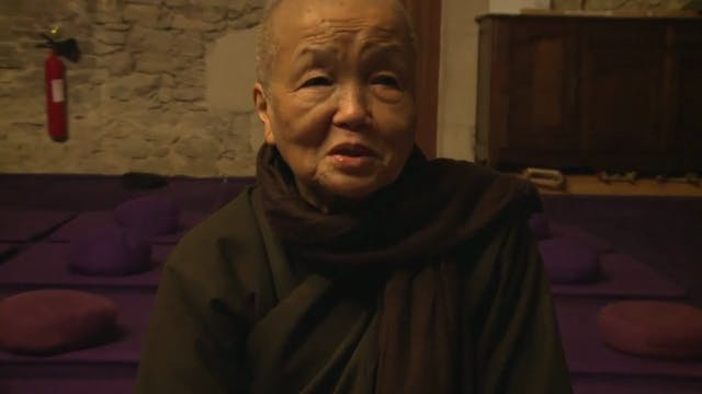 T5P Video Extras -Sister Chan Khong - If You Are So Called Buddhist You Have To Call For Peace
