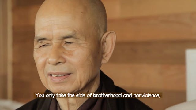 T5P Video Extras - Thich Nhat Hanh - Not Choosing Sides
