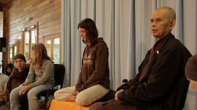 PS Video Extras - Thich Nhat Hanh QA 2