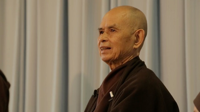 PS Video Extras - Thich Nhat Hanh QA 3