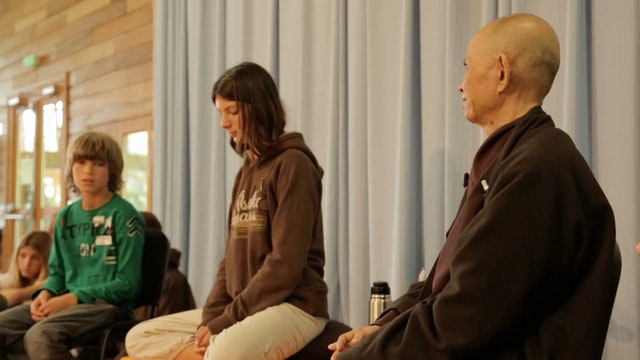 PS Video Extras - Thich Nhat Hanh QA 5