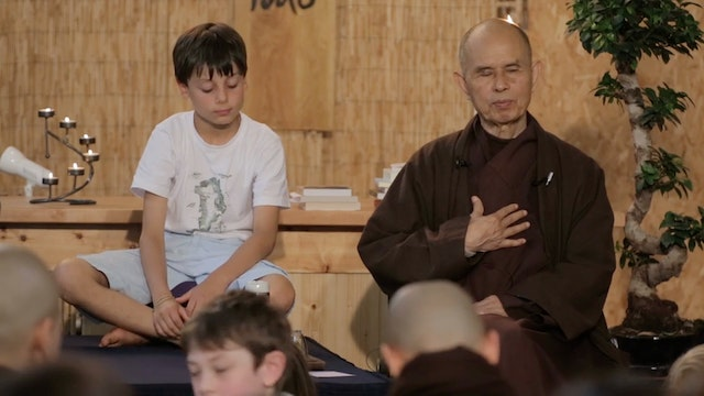 PS Video Extras - Thich Nhat Hanh QA Avalokiteshvara