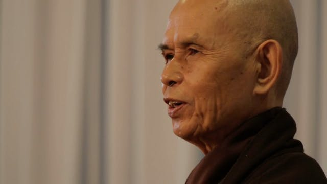 PS Video Extras - Thich Nhat Hanh QA Killing