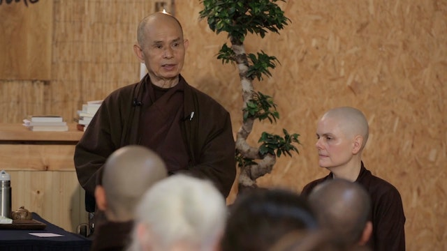 PS Video Extras - Thich Nhat Hanh QA lying